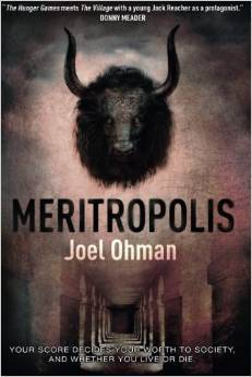 Meritropolis Book Cover