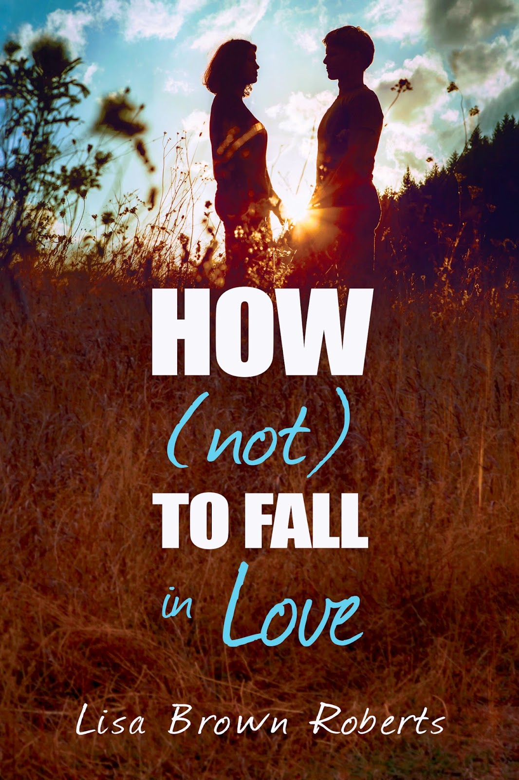 How (Not) to Fall in Love Book Cover